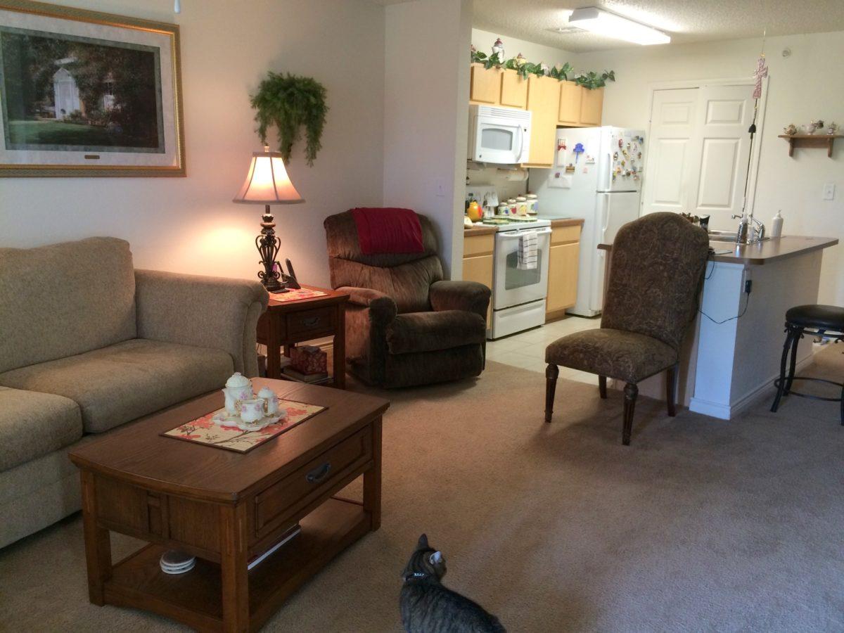 Landings-at-Pebble-Creek-Living-Kitchen