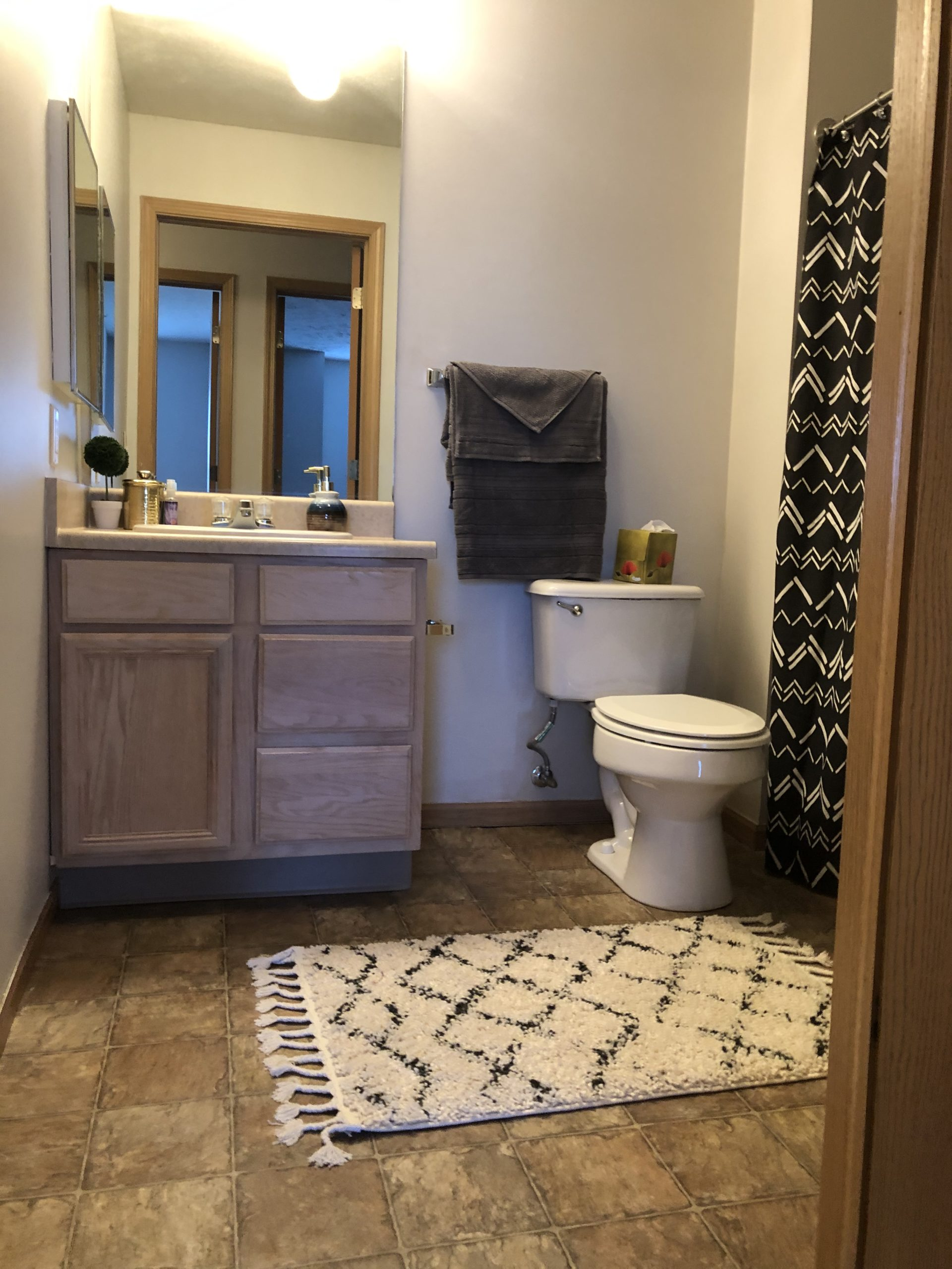 Tregaron Senior Residence Bellevue Nebraka bath 3