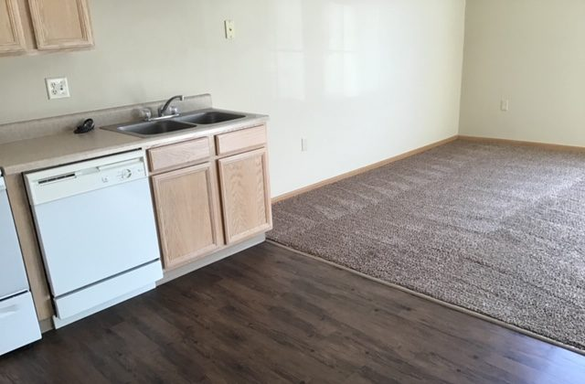 kitchen and living room vacant