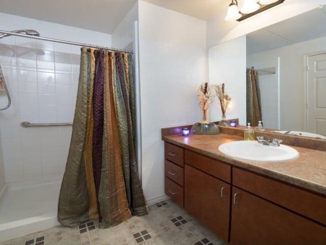 Carpenter's Pointe Dallas Texas bathroom