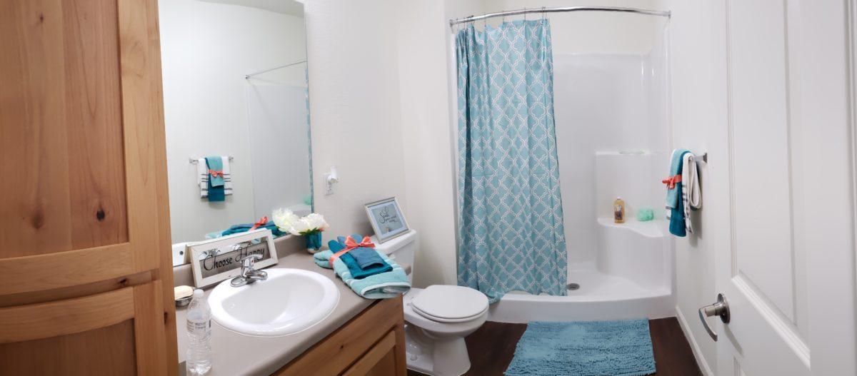 Villas at Lark Pointe bathroom